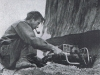 The Big Kauri - Chainsaw
